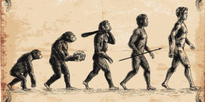 Teoria evoluționista este un rod al imaginației (I)