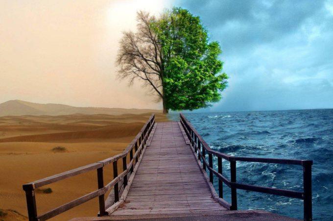 Duhul lumesc în viaţa duhovnicească
